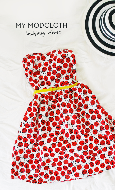 ladybug dress at modcloth / ann kelle